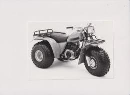 Honda +-21cm X 10cm  Moto MOTOCROSS MOTORCYCLE Douglas J Jackson Archive Of Motorcycles - Photographs
