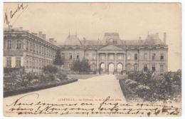 CPA Luneville, Le Chateau Vu De La Grande Allee, Gel. 1902 - Luneville