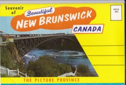 AN52 New Brunswick Lettercard - 12 Images - New Brunswick