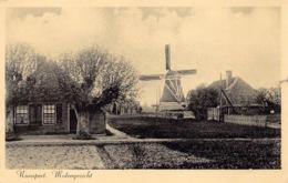 Windmolen Windmill  Molen Nunspeet Molengezicht   Nederland   Barry 1070 - Moulins à Vent