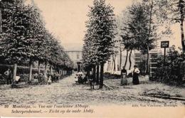 Montaigu Scherpenheuvel Vue Sur L'ancienne Abbaye - België