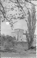 17 - Charente Maritine - Montguyon - Eglise De Vassière - Francia
