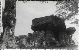 17 - Charente Maritine - Montguyon - Pierre Folle - Francia