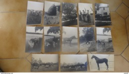 Lot De 54 Cartes Photo A GUICHE, Ferme Au Lieu-dit MARIBERE - Francia