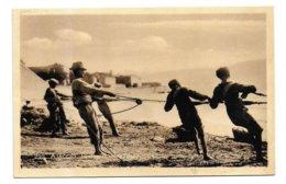20 – AJACCIO : Pêcheurs Au Filet N° 292 - Ajaccio