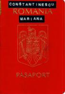 Romania, 2002, Vintage Expired Passport - Visas And Stamps: Hungary, Austria, Slovenia - Documentos Históricos