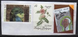 Belgium 3 V Used Rose Forset Vacation EUROPA Christian De Duve - Belgio