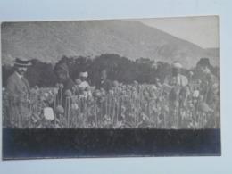 Turkey 245 Smyrna Smyrne Izmir  1917 Opium Field Reading  Foto Photo - Türkei
