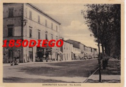 DONORATICO - VIA AURELIA F/GRANDE NONVIAGGIATA  ANIMAZIONE - Livorno