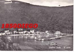 CAPRAIA ISOLA - IL PORTO F/GRANDE VIAGGIATA 1962 ANIMAZIONE - Livorno