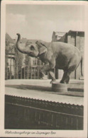 Leipzig, Zoologischer Garten, Elefantengehege, Foto-Postkarte, Sachsen - Leipzig