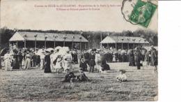 72 : Sarthe : Sillé Le Guillaume : Hippodrome De La Foret . - Sille Le Guillaume