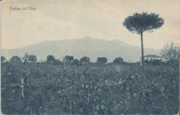 CATANIA-VEDUTA DELL'ETNA - Catania