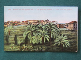 "French Levant Palestine (Israel) 1902 - 1920 Unused Postcard ""Gardens - Jaffa"" - Palestina"