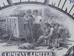 USA - DANVERS 1895 - VICTOR GOLD MINING - TITRE DE 10 ACTIONS DE 5 DOLLARS - BELLE VIGNETTE - Azioni & Titoli