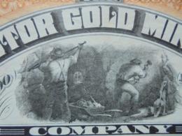 USA - MANHATTAN 1896 - VICTOR GOLD MINING - TITRE DE 5 ACTIONS DE 5 DOLLARS - BELLE VIGNETTE - Azioni & Titoli