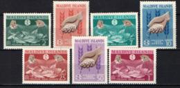 """MALDIVE - 1963 - FAO""""Freedom From Hunger"""" Campaign - MNH - Maldive (1965-...)"""