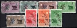 MALDIVE - 1960 - 17th Olympic Games, Rome - MNH - Maldive (1965-...)