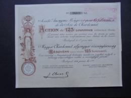 HONGRIE, BUDAPEST 1904 - SA HONGROISE POUR LA FABRICATION DE LA SOIE DE CHARDONNET - ACTION DE 125 COURONNES - DECO - Hist. Wertpapiere - Nonvaleurs
