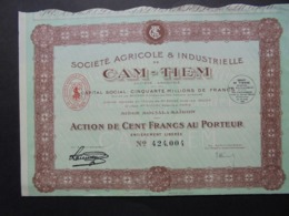 INDOCHINE - SAIGON 1929 - STE AGRICOLE ET INDUSTRIELLE DE CAM-TIEM - ACTION DE 100 FRS - Azioni & Titoli