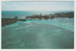 BELIZE INN CAYO HICACO Postcard - Belize