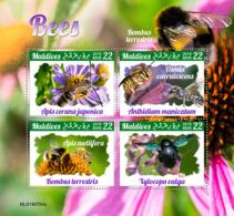 Maldives 2019  Fauna  Bees S201910 - Maldives (1965-...)