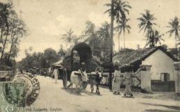 Colpatty Ceylon Attelage Buffles + Beau Rimbe 3c Ceylon Postage  RV - Sri Lanka (Ceylon)