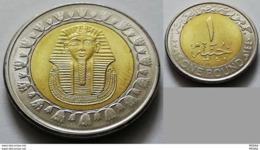EGYPT 2019 - RARE One Pound Of Tut - V Low Mintage - Egypt