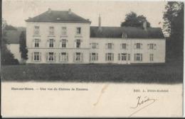 HAM-sur-HEURE - Une Vue Du Château De Hameau 1905 - Ham-sur-Heure-Nalinnes