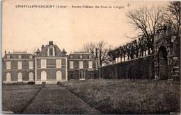 45 CHATILLON COLIGNY - Ancien Château Des Sires De Coligny - Chatillon Coligny