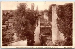 45 CHATILLON COLIGNY - Le Becquerel, La Tour Et Les Jardins - Chatillon Coligny