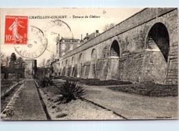 45 CHATILLON COLIGNY - Vue D'ensemble De La Terrasse Du Château - Chatillon Coligny