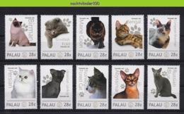 Nff174 FAUNA KATTEN ZOOGDIEREN BENGAL MAINE COON BIRMAN PERSIAN CATS MAMMALS KATZEN CHATS FELINS  PALAU 2012 PF/MNH - Hauskatzen