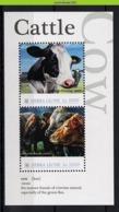 Nff175 FAUNA ZOOGDIEREN BOERDERIJDIEREN KOEIEN COWS KUHE MAMMALS FARM ANIMALS SIERRA LEONE 2010 PF/MNH - Kühe