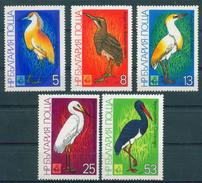 3036 Bulgaria 1981 EXPO Plovdiv MARSH Birds ** MNH / EMBLEM - DEER /Internationale Jagdausstellung Bulgarie Bulgarien - Nuovi