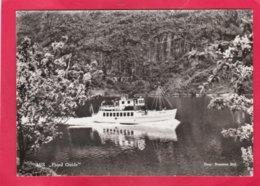 Modern Post Card Of M/S Fjord Guide,A25. - Fähren