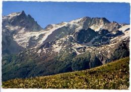 CPSM Dentelée 10.5 X 15 Hautes Alpes   Massif De L'Oisans  La Meije Et Le Rateau Depuis Le Plateau D'Emparis - Francia