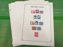 LOT N° 1146 NATIONS UNIS Debut De  Collection Sur Page D'albums Neufs * - Stamps