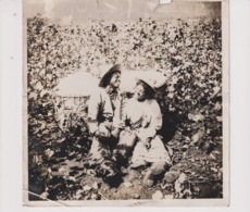 SLAVERY ? PICKING COTTON  SOME DAMAGE BUT ONE OF THE BEST FOTOS I HAVE SEEN   +- 18*18CMFonds Victor FORBIN (1864-1947) - Africa