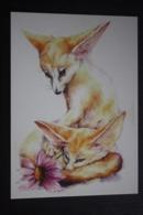 Fennec Fox  - Modern Postcard -  Russian Edition - Tierwelt & Fauna