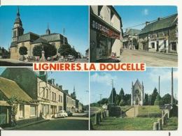 53 - LIGNIERES LA DOUCELLE / MULTIVUES - Francia