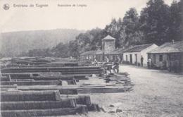 Environs De Cugnon Ardoisière De Linglay - Bertrix