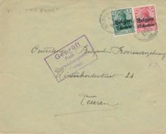 541/30 -- Province Du LIMBOURG - Enveloppe TP Germania STEVOORT - Censure HASSELT - WW I