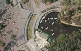 Silver Springs, Florida Aerial View Showing Gift Shops And Restaurant - Silver Springs