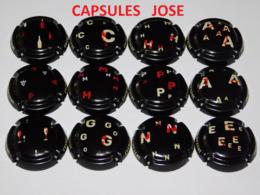Série De 9 Capsules De Champagne  - GENERIQUE (Puzzle Novembre 2019) - Colecciones