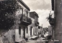 00072 - MESSINA - FARO SUPERIORE -VIA GRAZIA - Messina