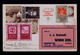ROMANIA Postal Stationery 1958 Flora Carpatina Bullfight Bulls Faune IVAN FRANCO Famouse Man Sp6260 - Gallinaceans & Pheasants