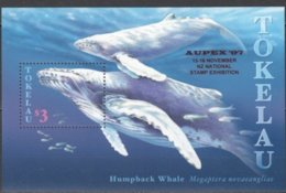 Tokelau 1997 Yvertn° Bloc  18 *** MNH Cote 7 Euro Faune Marine Walvissen Baleines Aupex 97 - Tokelau