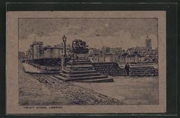 Torfmoos-AK Limerick, Treaty Stone, Denkmal, Irland - Ansichtskarten