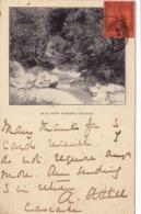 285/ Blue Basin Scenery, Trinidad 1906 - Trinidad